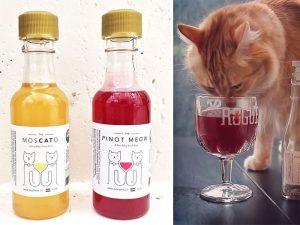 catnip-wine-for-cats-apollo-peak-coverimage