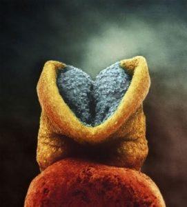 Έμβρυο 22 ημερών. Στο γκρι σημείο θα αναπτυχθεί ο εγκέφαλος.