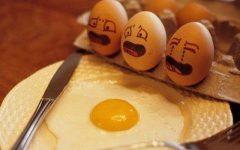 αυγά και αντικατάστατο αυγού