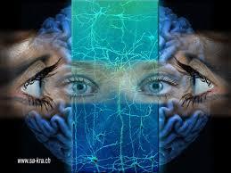 ο εγκέφαλος ένας λαβύρινθος!!
